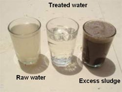 picture : Water Quality